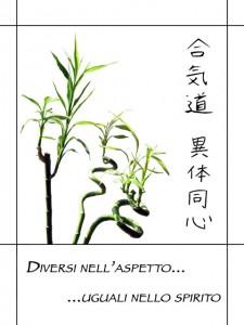 Aikido Itai Doshin